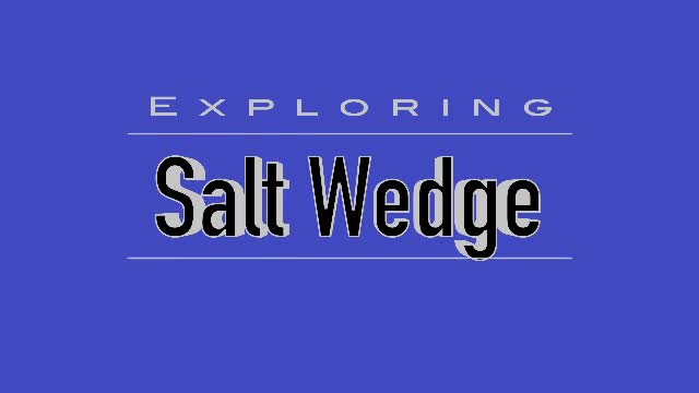 Exploring a salt wedge